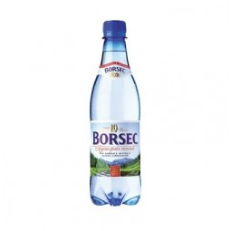 APA BORSEC carbo. 0.5L